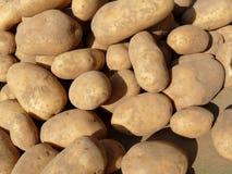 Roodbruine aardappels bij markt Stock Afbeeldingen