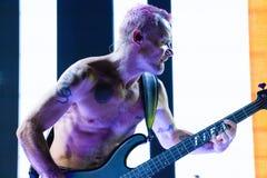Roodgloeiend Chili Peppers - Vlo royalty-vrije stock afbeelding