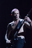 Roodgloeiend Chili Peppers - Vlo stock afbeeldingen