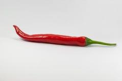 Roodgloeiende die Spaanse peperpeper, op wit wordt geïsoleerd stock fotografie