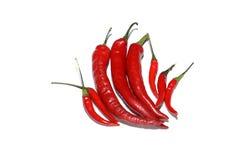 Roodgloeiende die Spaanse pepers op wit worden geïsoleerd Royalty-vrije Stock Fotografie
