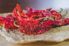 Roodgloeiende droge peper bij het bewerken van document royalty-vrije stock foto