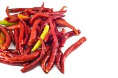 Roodgloeiende geïsoleerdeh Spaanse peperpeper Royalty-vrije Stock Afbeeldingen