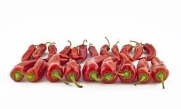 Roodgloeiende kruidige paprika royalty-vrije stock fotografie