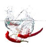 Roodgloeiende paprika in water Stock Foto