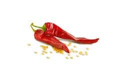 Roodgloeiende peper royalty-vrije stock foto