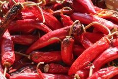Roodgloeiende peper royalty-vrije stock afbeeldingen