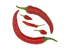 Roodgloeiende peper. Stock Foto