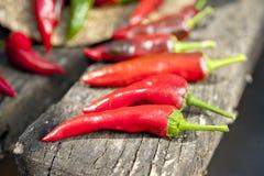 Roodgloeiende peper in de zomerzonlicht Royalty-vrije Stock Fotografie