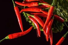 Roodgloeiende peper, op zwarte achtergrond, kruidig voedsel royalty-vrije stock fotografie