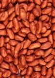 Roodgloeiende pinda Royalty-vrije Stock Afbeelding