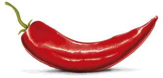 Roodgloeiende Spaanse peper Royalty-vrije Stock Foto's