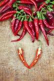 Roodgloeiende Spaanse peperpeper Stock Fotografie