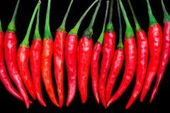 Roodgloeiende Spaanse peperpeper Stock Afbeeldingen