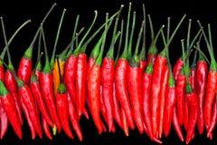 Roodgloeiende Spaanse peperpeper Royalty-vrije Stock Afbeelding