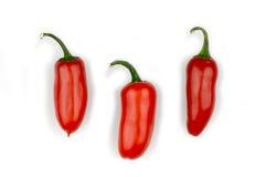 Roodgloeiende Spaanse peperpeper stock foto
