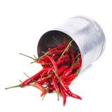 Roodgloeiende Spaanse peperpeper die op witte achtergrond wordt geïsoleerd Kruidige Spaanse pepers Royalty-vrije Stock Afbeelding