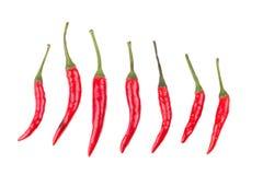 Roodgloeiende Spaanse peperpeper die op witte achtergrond wordt geïsoleerd Kruidige Spaanse pepers Royalty-vrije Stock Foto
