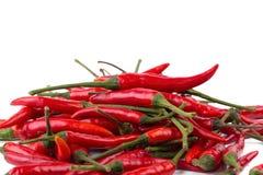 Roodgloeiende Spaanse peperpeper die op witte achtergrond wordt geïsoleerd Kruidige Spaanse pepers Stock Afbeelding