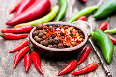 Roodgloeiende Spaanse peperpeper en andere kruiden in een kleine plaat op hout Royalty-vrije Stock Afbeelding