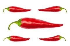 Roodgloeiende Spaanse peperpeper met het knippen van weg Royalty-vrije Stock Foto