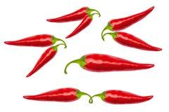 Roodgloeiende Spaanse peperpeper met het knippen van weg Royalty-vrije Stock Afbeeldingen