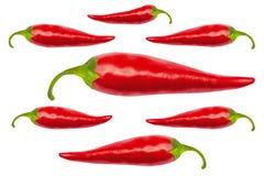 Roodgloeiende Spaanse peperpeper met het knippen van weg Royalty-vrije Stock Fotografie