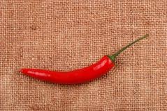 Roodgloeiende Spaanse peperpeper op een jute Stock Afbeelding