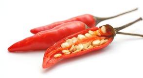 Roodgloeiende Spaanse pepers Stock Afbeelding