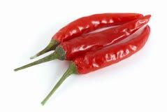 Roodgloeiende Spaanse pepers Stock Fotografie