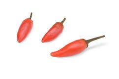Roodgloeiende Spaanse pepers Stock Foto