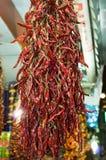 Roodgloeiende Spaanse pepers Royalty-vrije Stock Afbeelding