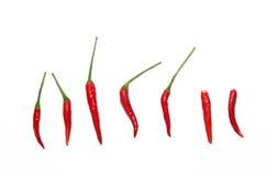 Roodgloeiende Spaanse pepers op witte achtergrond Royalty-vrije Stock Foto's