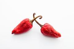 Roodgloeiende Spaanse peperspeper Royalty-vrije Stock Foto