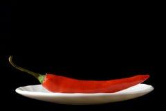 Roodgloeiende Spaanse peperspeper Royalty-vrije Stock Foto's