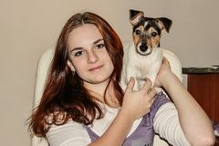 Roodharig meisje die een puppy Jack Russell houden stock afbeelding