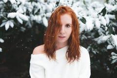 Roodharige in de Sneeuw royalty-vrije stock foto