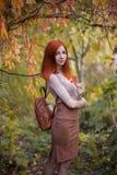Roodharigemeisje in de herfst stock fotografie
