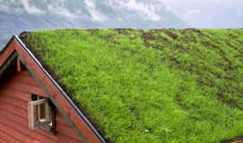 Roof. Covered with grass. Scandinavian style Stock Photos