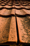 Roof. Red Roof of a brick house royalty free stock photo