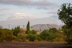 Roof of Africa - Kilimanjaro, Kibo mountain Stock Image