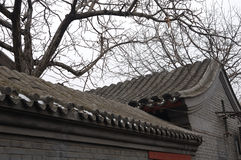 The roof of Beijing quadrangle Stock Images