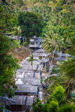 Roof bungalows in the palm jungle Stock Image