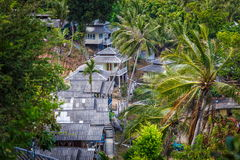 Roof bungalows in the palm jungle Stock Photography