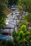 Roof bungalows in the palm jungle Royalty Free Stock Image