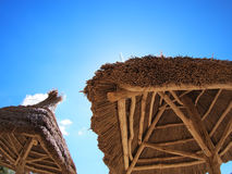 Roof canopy of reeds. Two roof of reeds with bottom view royalty free stock images