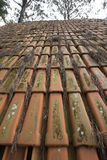 Roof clay tiles Royalty Free Stock Photography