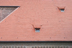 Roof Composition in Germany Stock Images