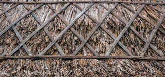 Roof dried leaf Royalty Free Stock Image