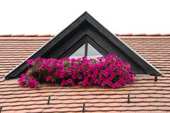 The roof and the flowers Stock Photography
